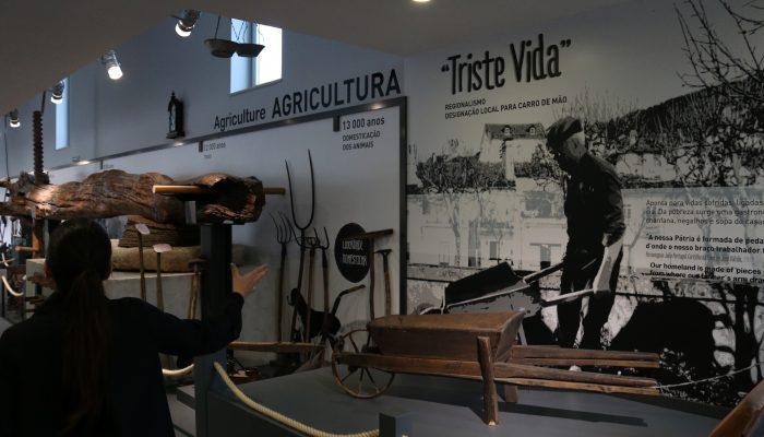 A agricultura está presente no parque biológico mas também no povo da Lousã