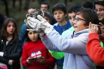 Apostar na educação ambiental
