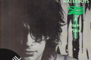 Vinil: Waterboys – All the things she gaves me