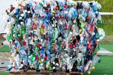 Ambiente: Lutar contra o excesso de plástico