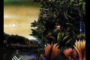 Vinil: Fleetwood Mac – Litle Lies