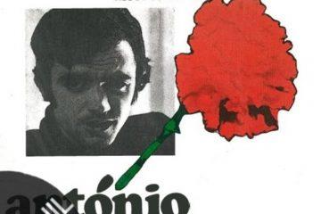 Vinil: António Macedo – Canta, amigo, canta