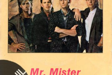 Vinil: Mr. Mister – Broken wings