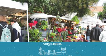 vida_lisboa
