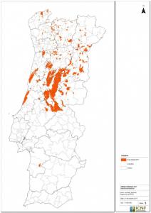 Fonte: EFFIS – JRC/CE e Imagens de satélite Sentinel e Landsat